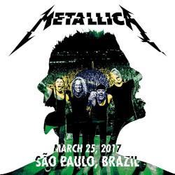 Metallica - Now that We're Dead